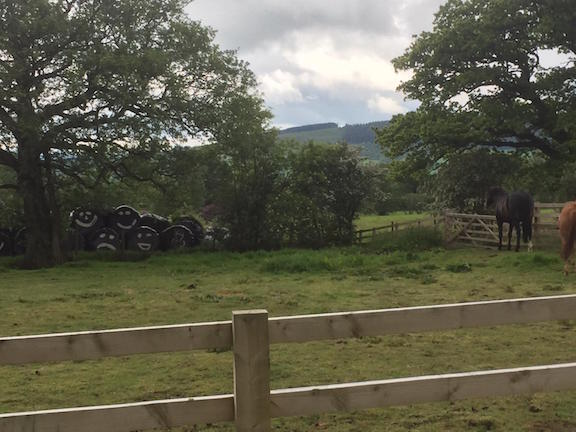 We stopped to look at Horses and funny hay bales when family cycling in the Forest of Bowland